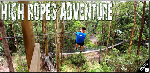 The Best TreeTop High Ropes Adventure In Australia