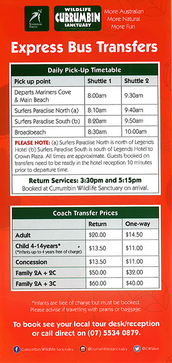 Bus Transfer Service